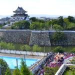 岸和田だんじり祭り2018はライブ中継される?見る方法は?