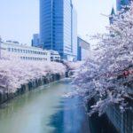 目黒川の桜2019アクセス(駅からの歩き方)と桜のハートの場所を紹介!